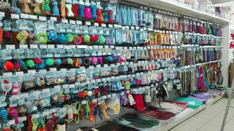 Dolif centri commerciali e grandi magazzini massa for Berti arredamenti srl massa ms