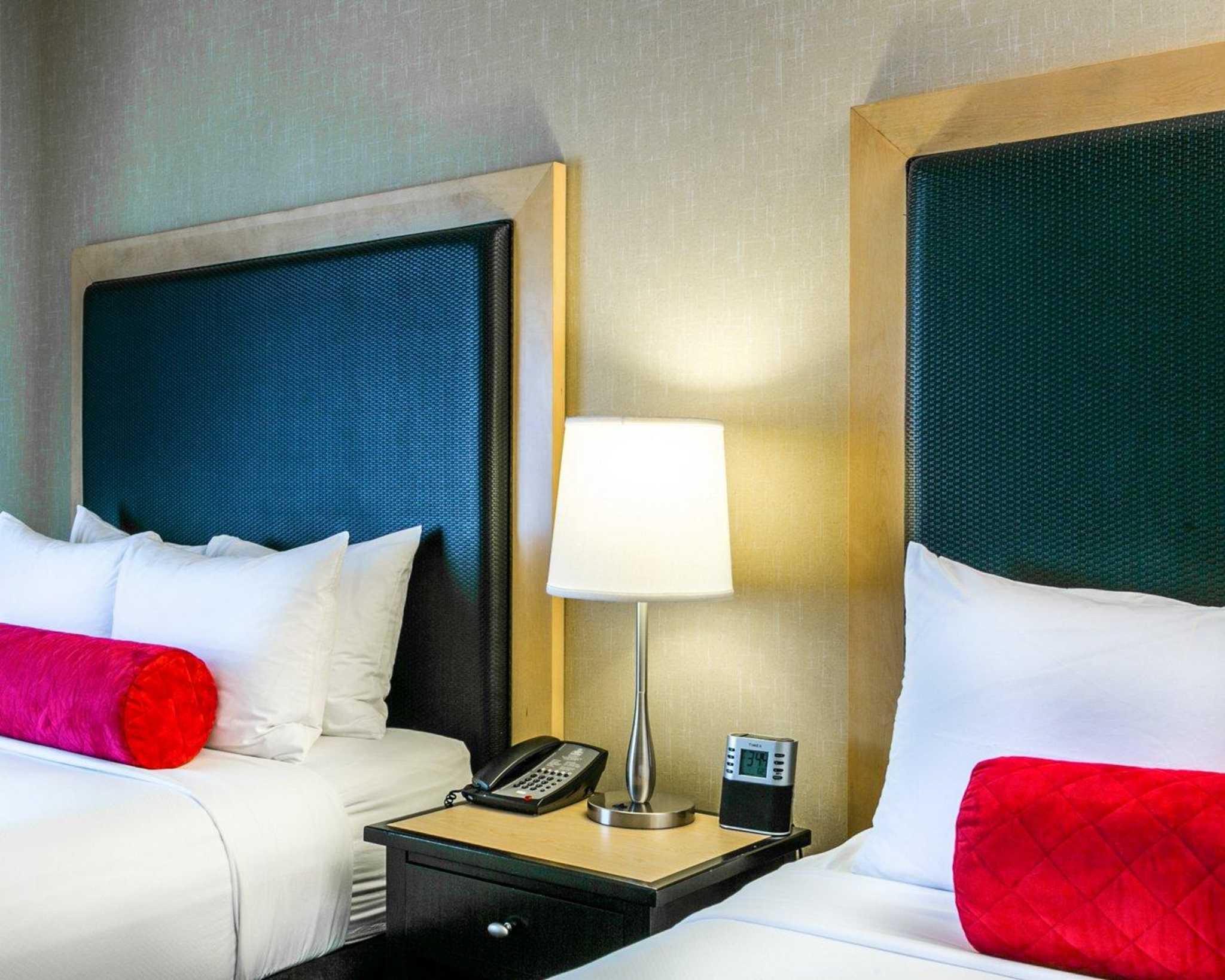 Cambria Hotel Denver International Airport image 5