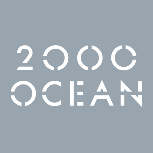 2000 Ocean image 2