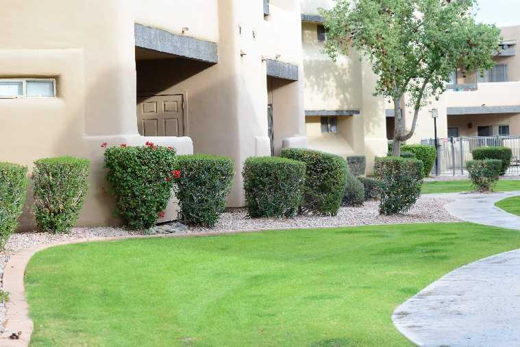Scottsdale Hozion Apartments image 2