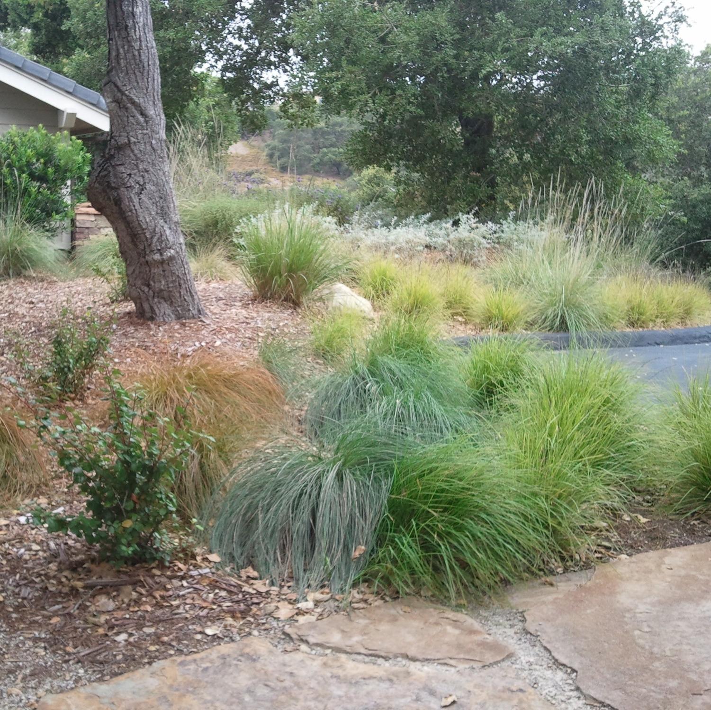 All Seasons Gardening & Landscaping image 30