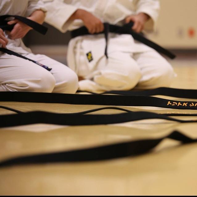 Robinson's ATA Martial Arts image 0