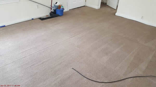 Absolute Carpet & Tile Cleaning image 9