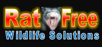 Rat-Free