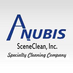 Anubis SceneClean Inc image 6