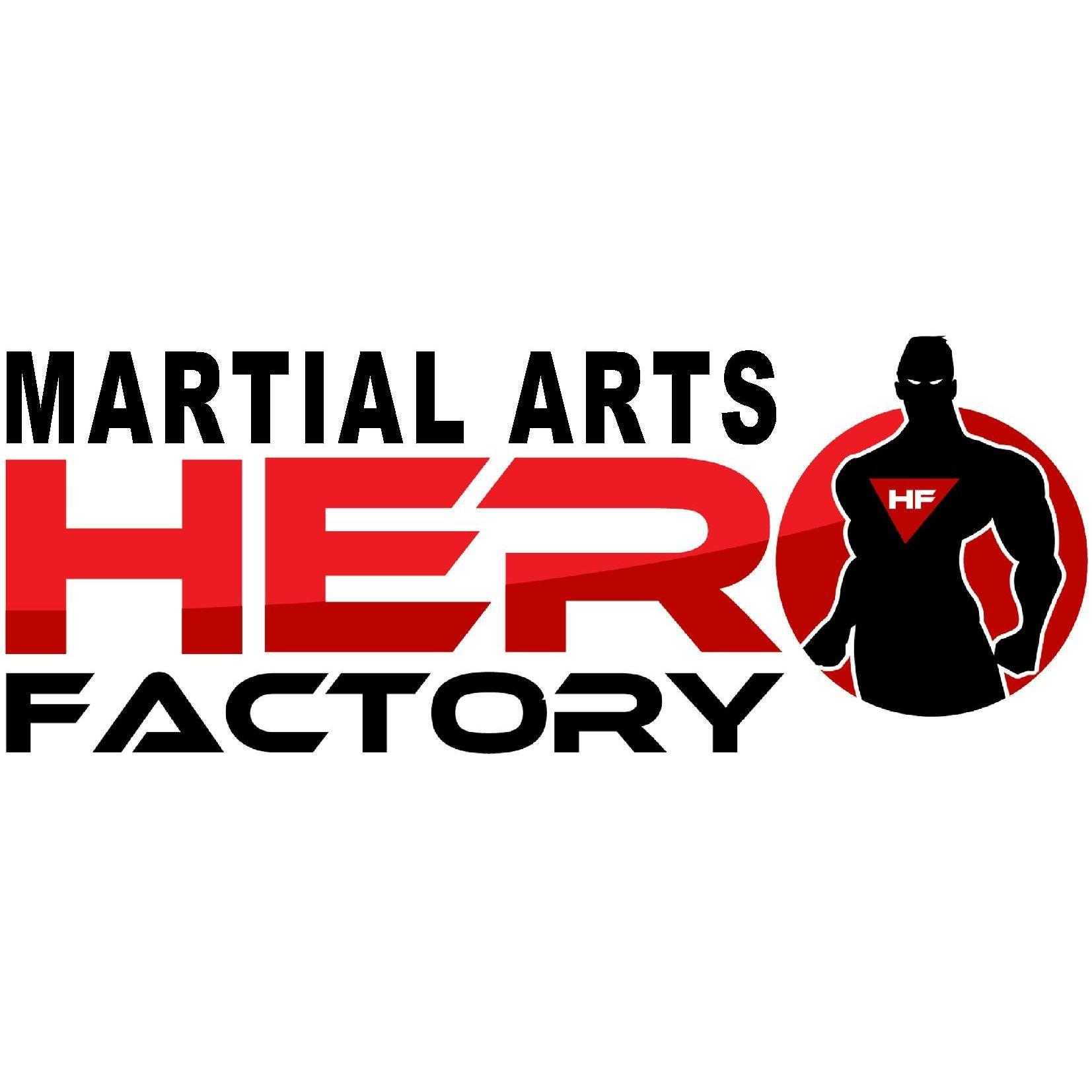 Martial Arts Hero Factory image 5