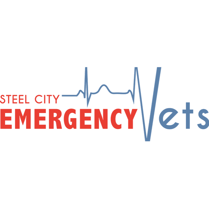 Steel City Emergency Vets