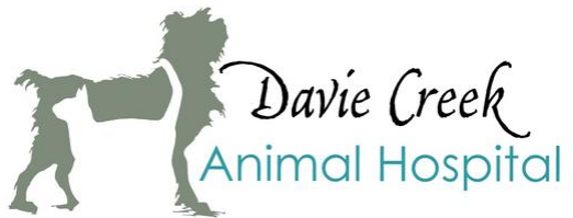 Davie Creek Animal Hospital