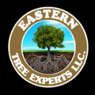 Eastern Tree Experts LLC