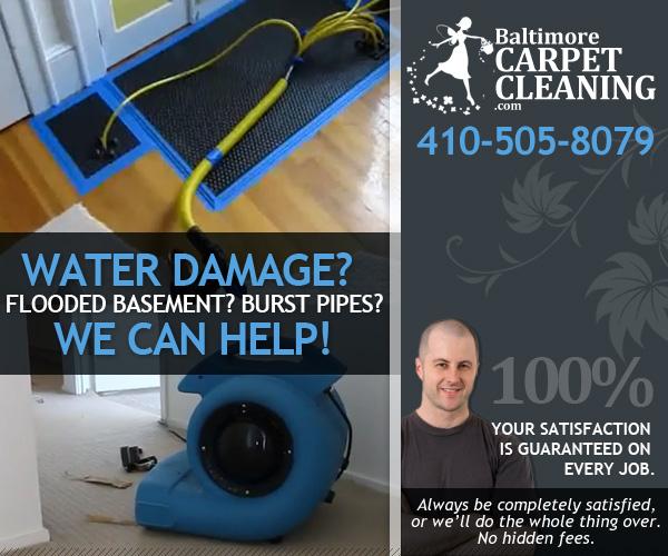 Baltimore Carpet & Upholstery image 5