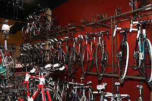 Elite Cycling image 2