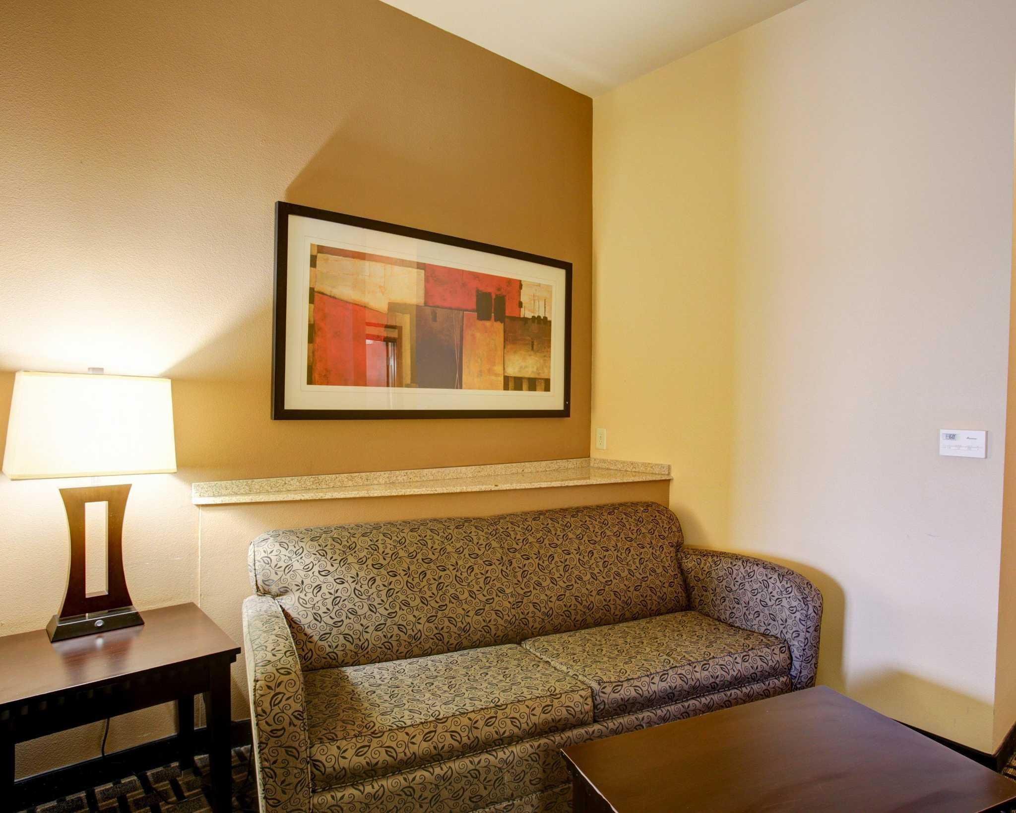 Comfort Suites Buda - Austin South image 8