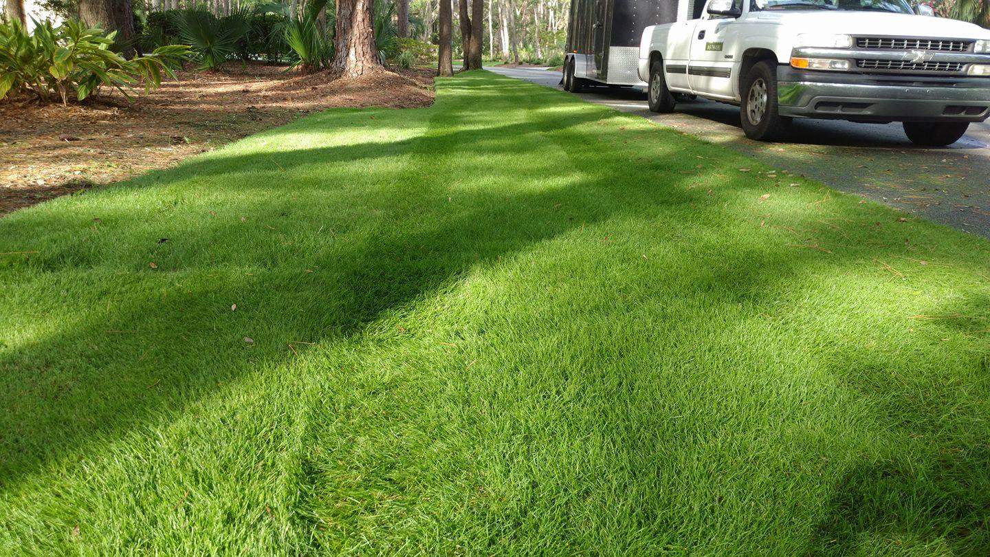 Lowcountry Greenscapes, LLC image 6