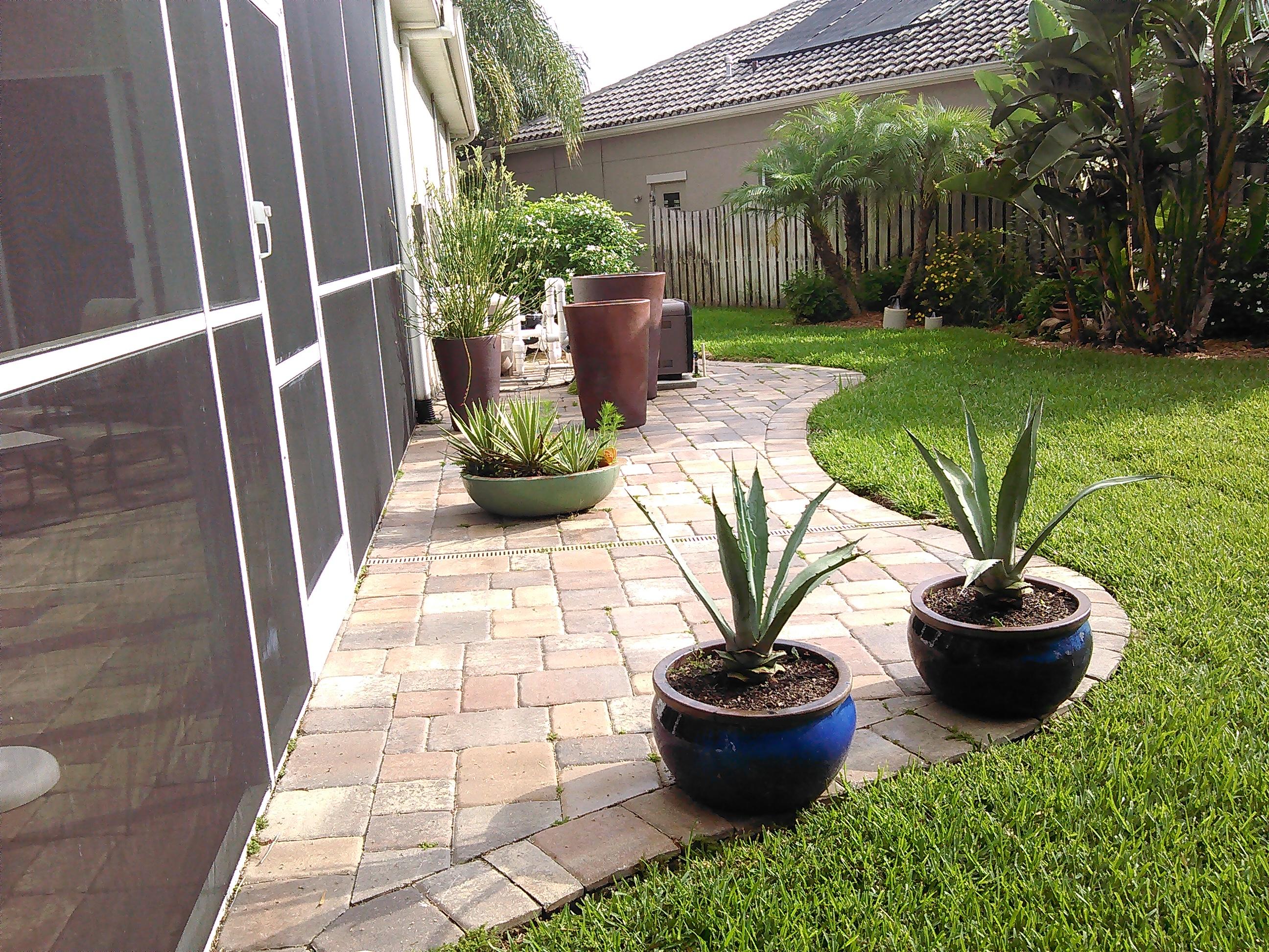Johns Palms Landscaping image 11