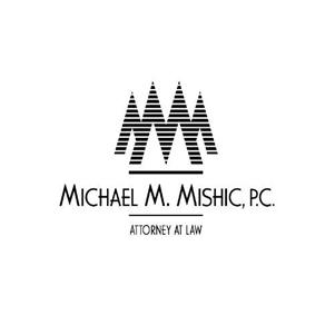 Michael Mishic