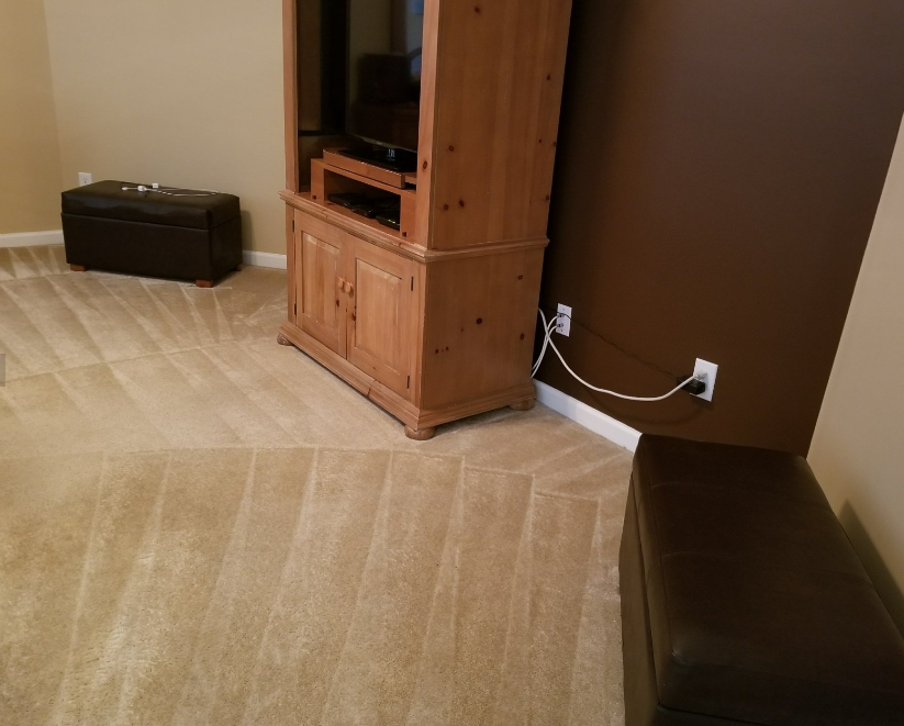Spotless Clean & Carpet Care