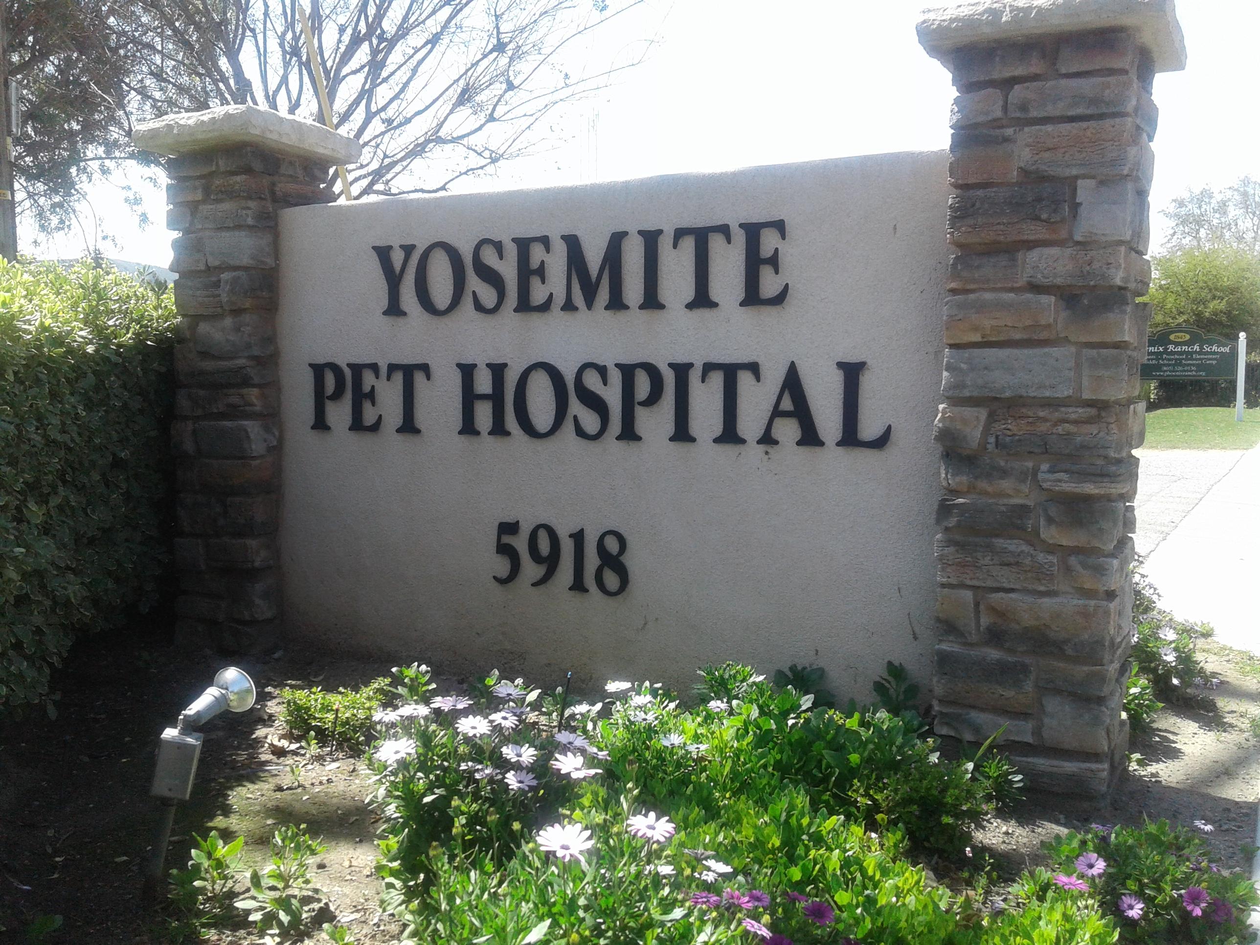 Yosemite Pet Hospital image 5