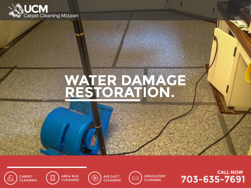 UCM Carpet Cleaning McLean image 4