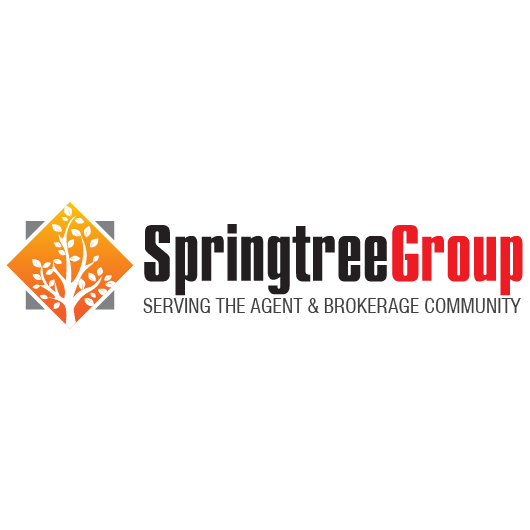 Springtree Group, LLC