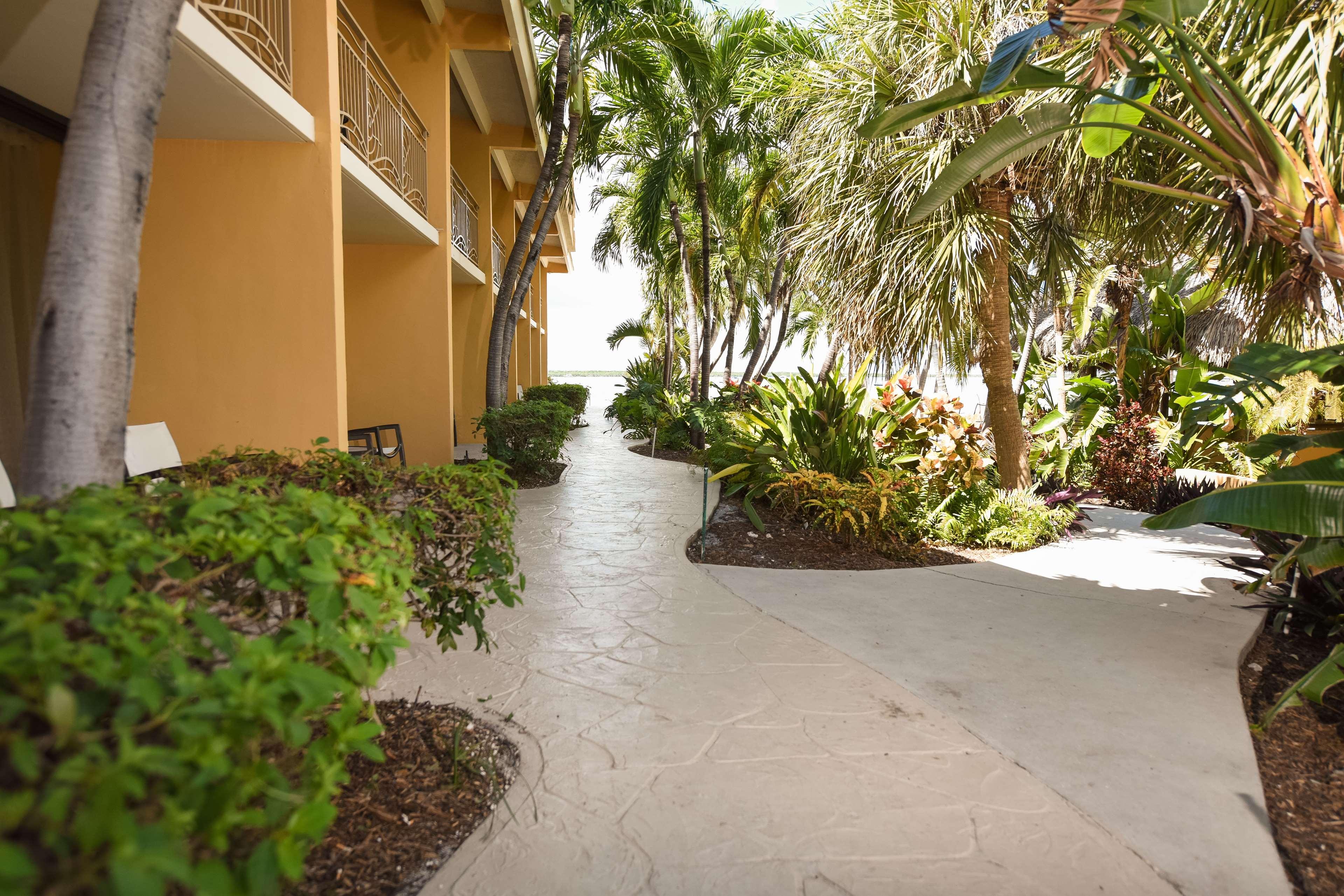 Hampton Inn Key Largo, FL image 3