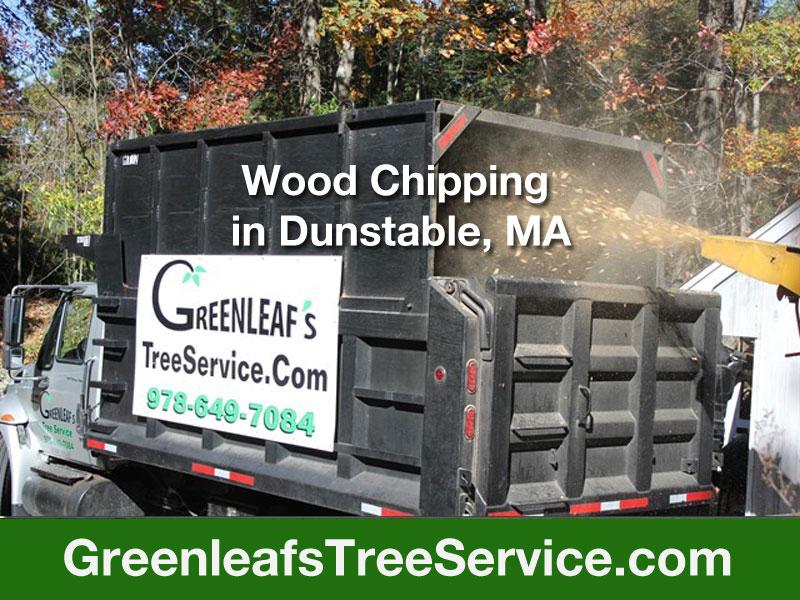 Greenleaf's Tree Service image 22