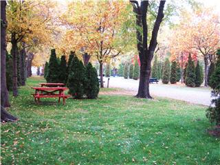 Hiawatha R V Park in Kelowna