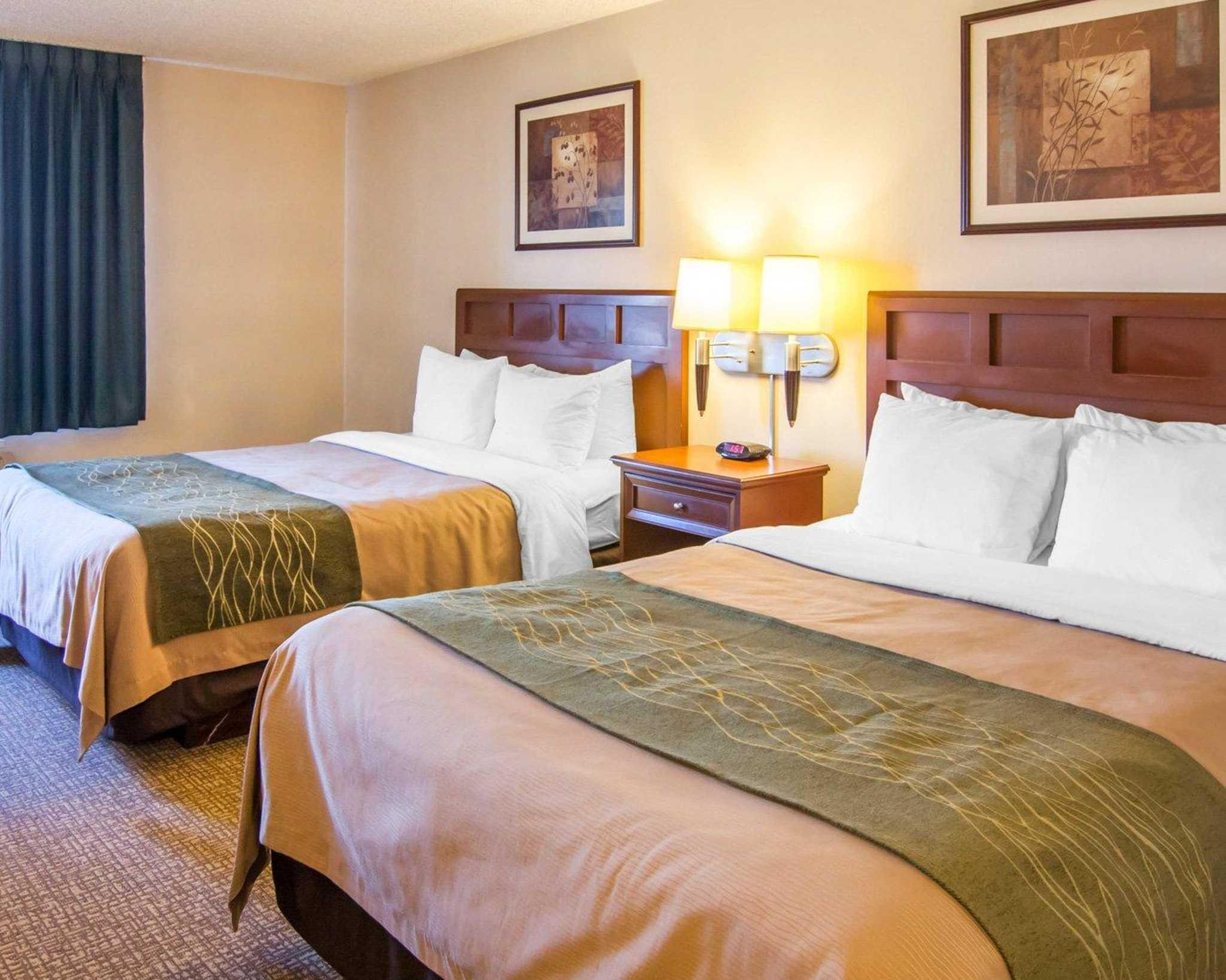 Comfort Inn North image 13