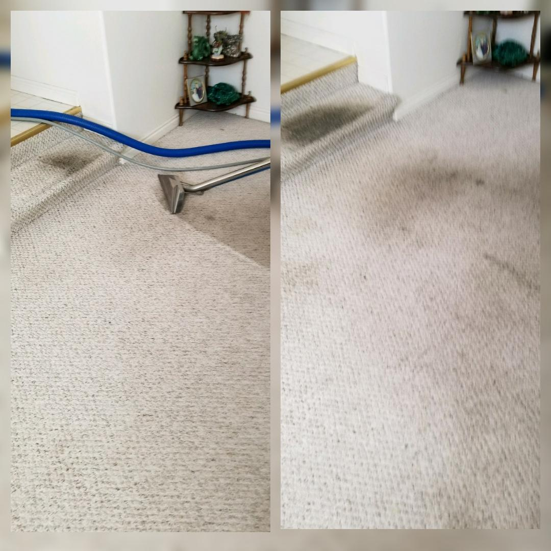 Kelly's Deep Clean Carpet & Upholstery Cleaning image 22