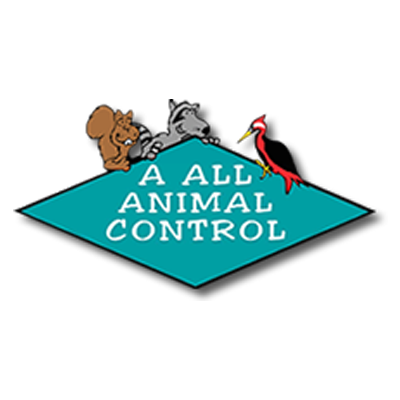 A All Animal Control image 10
