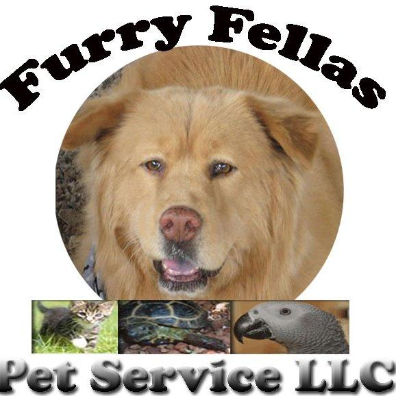 Furry Fellas Dog Walking & Pet Sitting Service Coupons ...