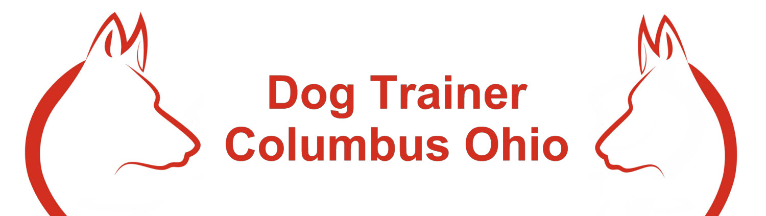 Dog Trainer Columbus Ohio image 0