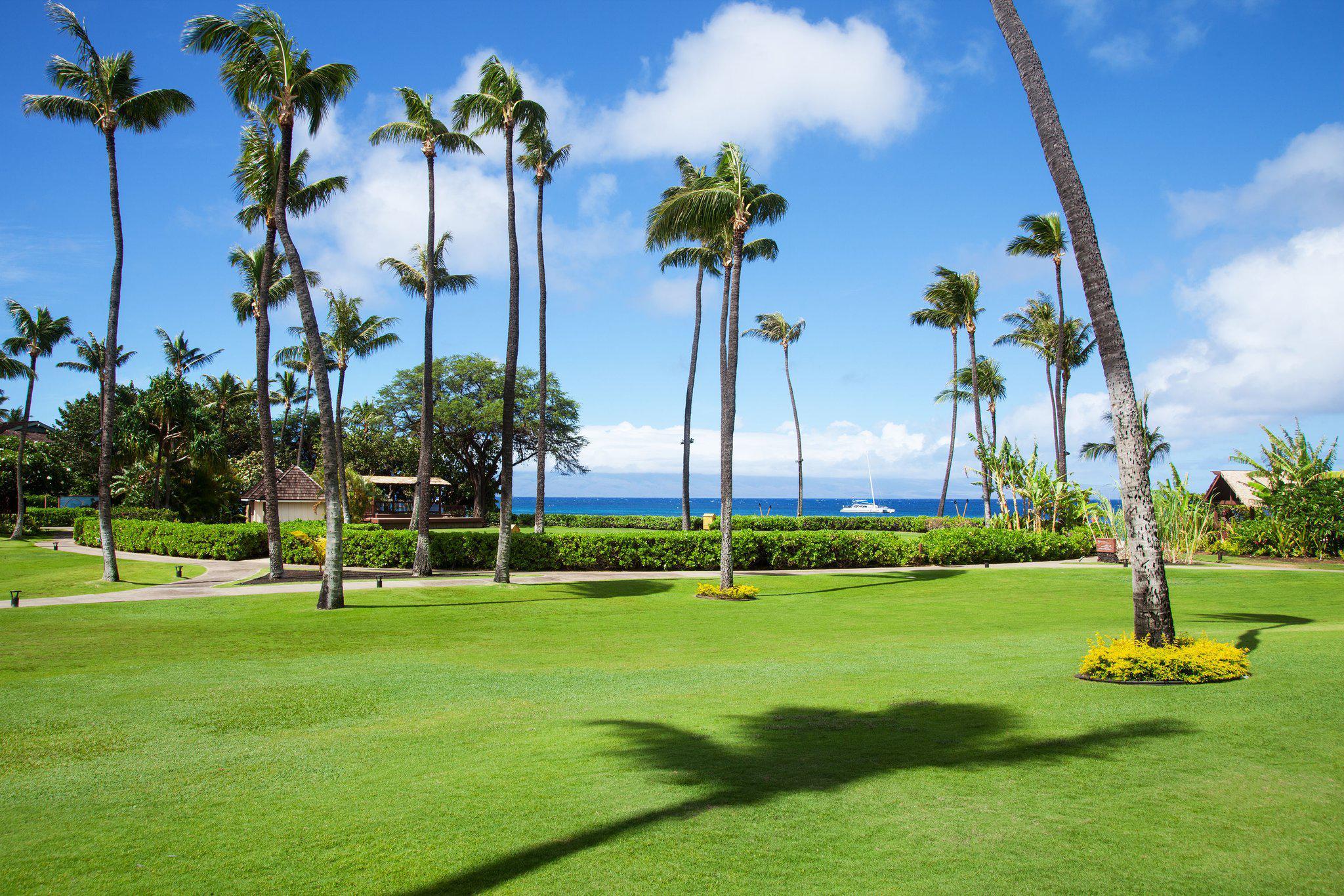 Sheraton Maui Resort & Spa in Maui, HI, photo #48