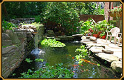 Williams Magical Garden Center & Landscape Inc image 4