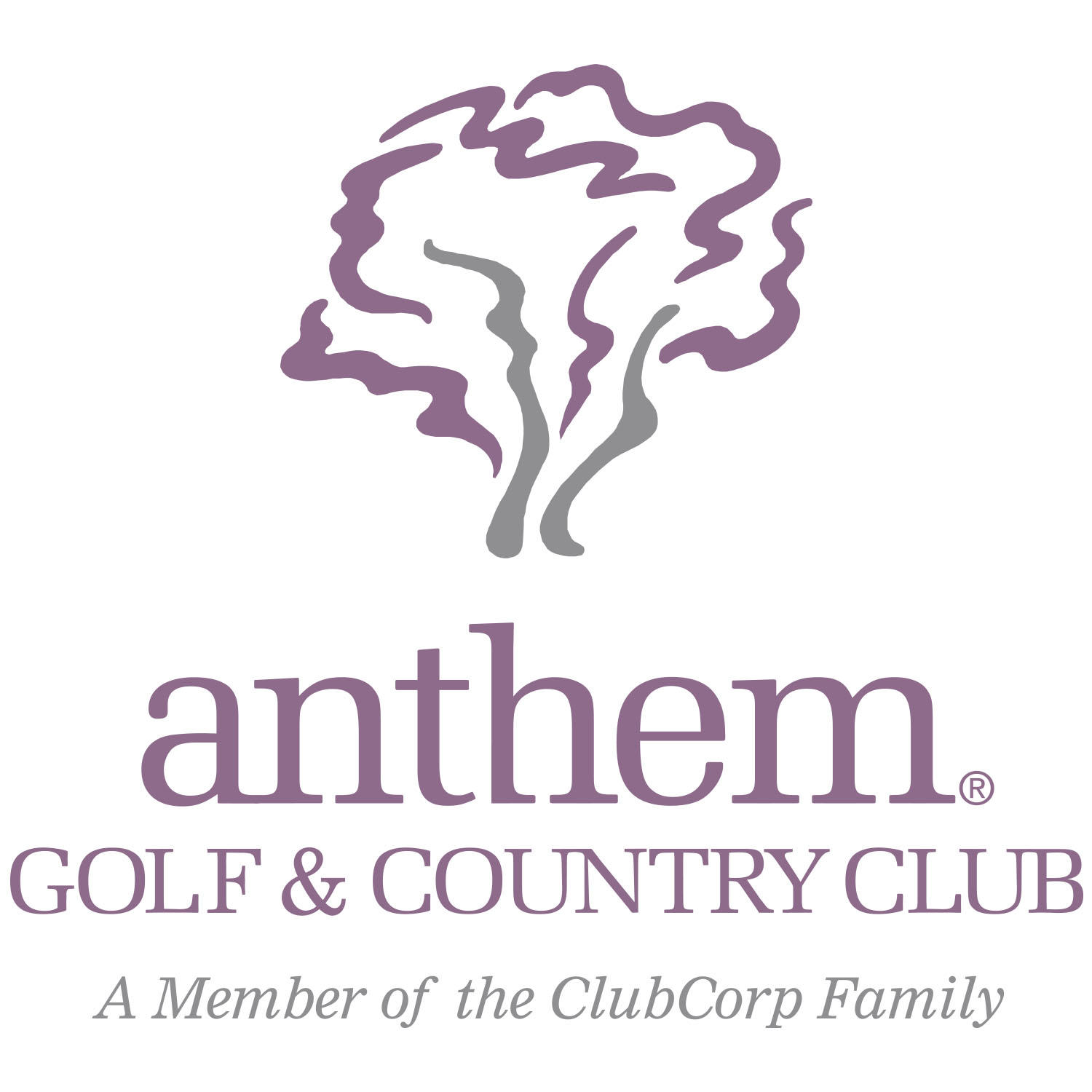 Anthem Golf & Country Club image 15
