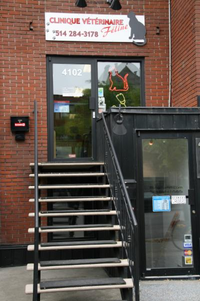Clinique Vétérinaire Féline Inc à Montréal