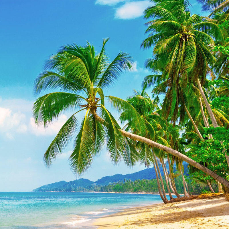 Salvatour Viaggi e Vacanze