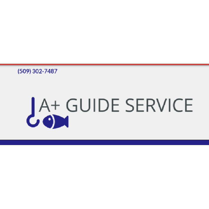 A+ Guide Service image 2