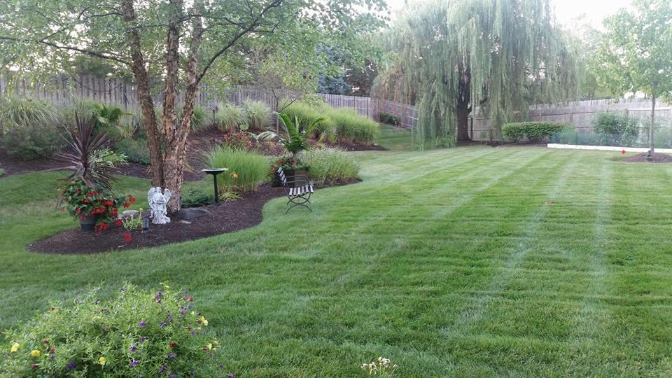 Adams Landscape Management Inc image 5