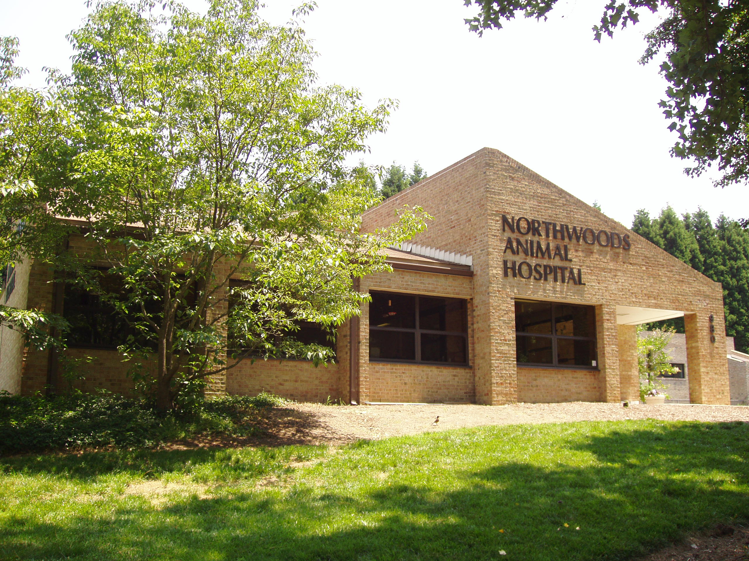 Northwoods Animal Hospital of Cary - Cary, NC
