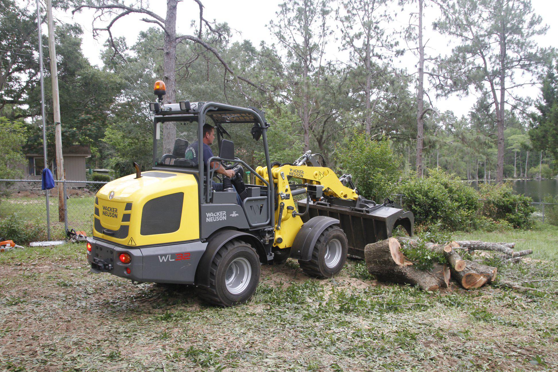 Big Bend Tree Service image 3