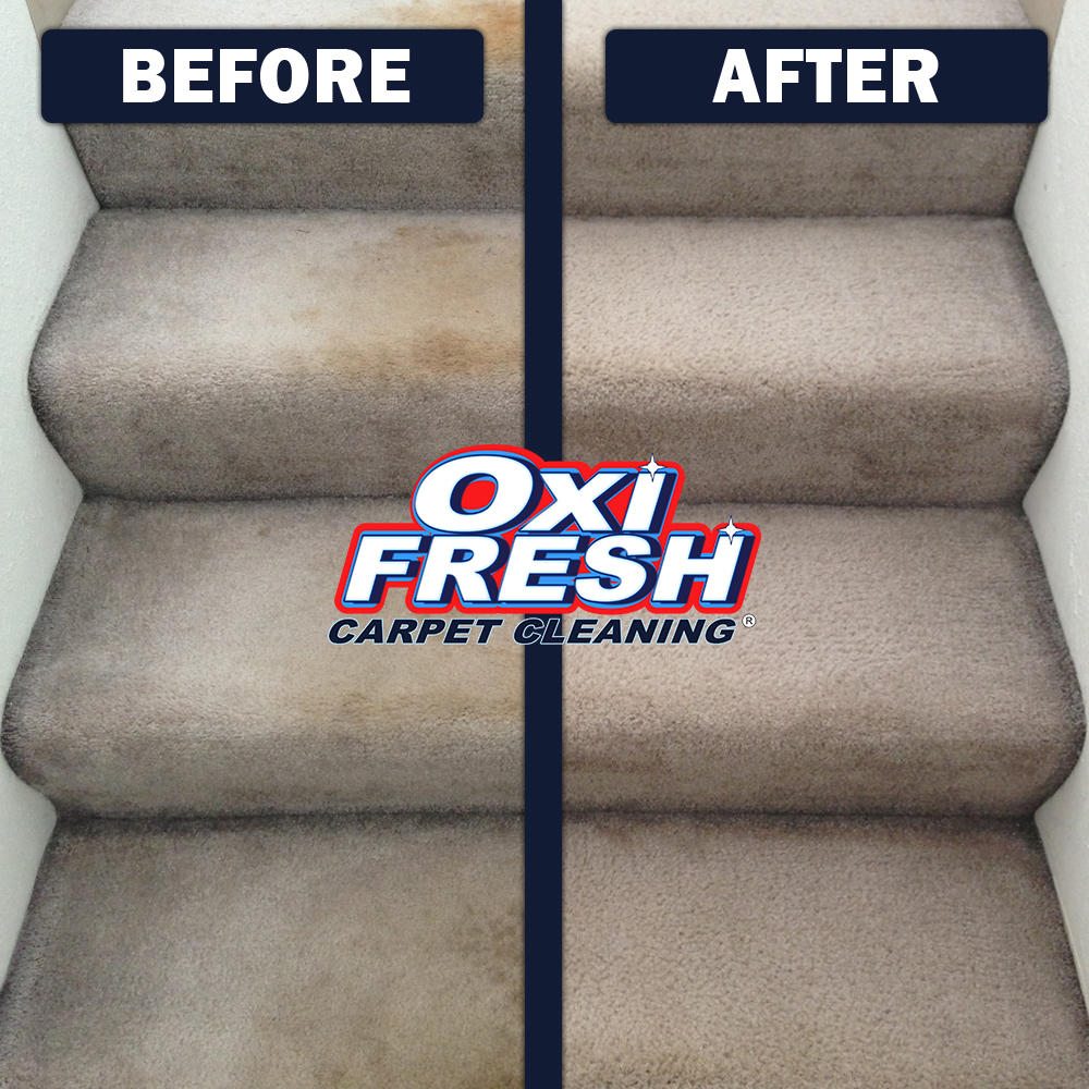 Oxi Fresh Carpet Cleaning image 3