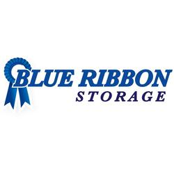 Blue Ribbon Storage image 3