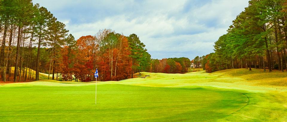 Eagle Watch Golf Club image 1