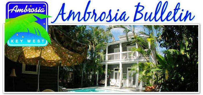 Ambrosia Key West image 5