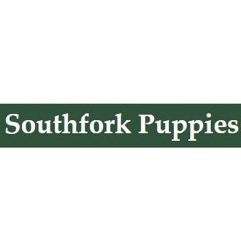 Southfork Puppies image 5