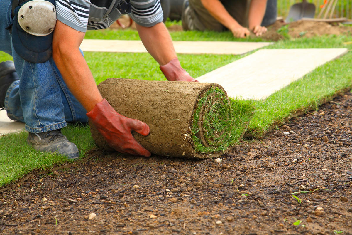All About Lawn Care & Tractor Work image 1