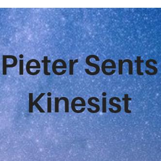 Kinesist Pieter Sents