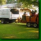 Tri-County Tree Service image 2