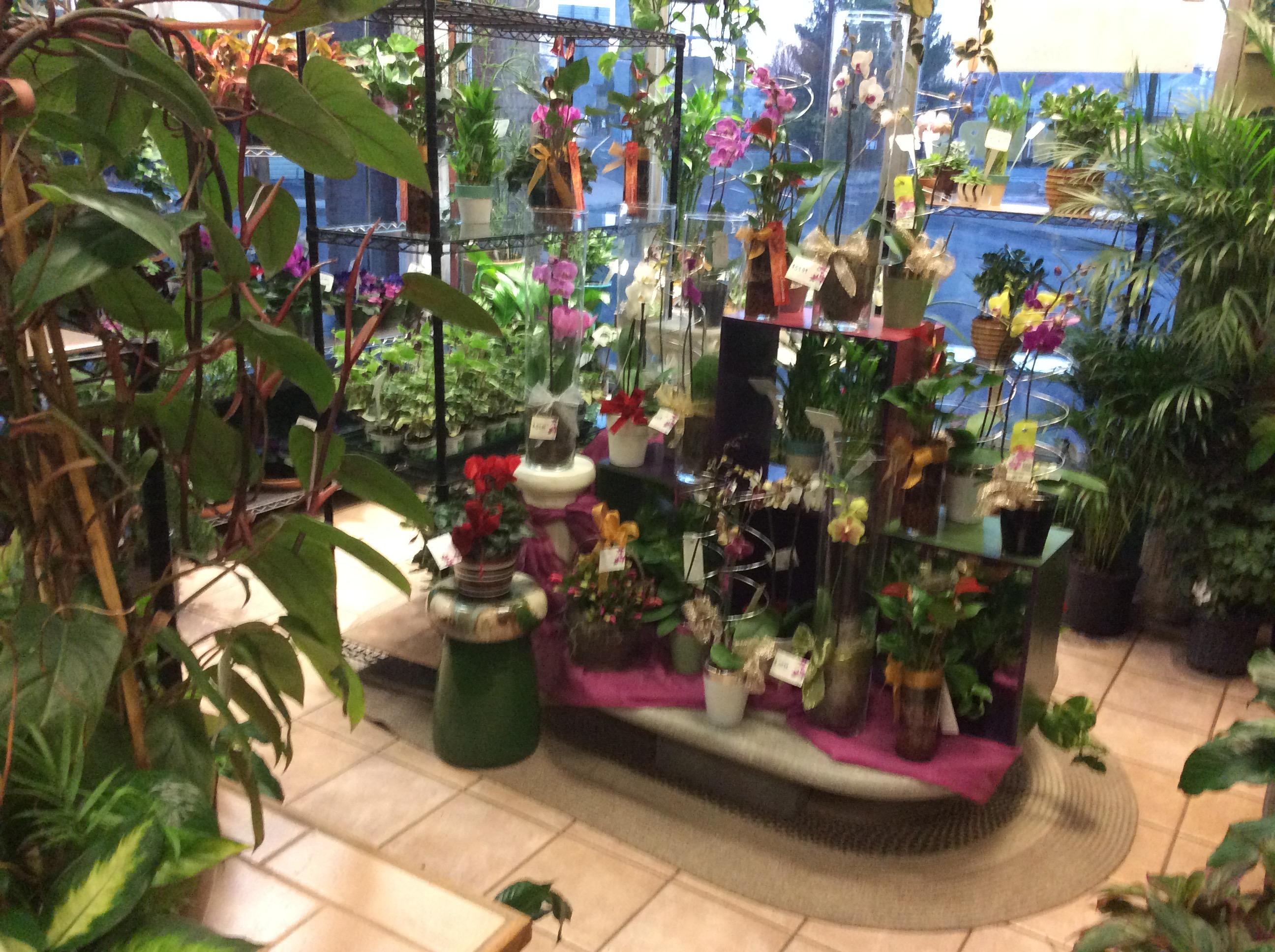 Floral Boutique & Sweet Shop image 3