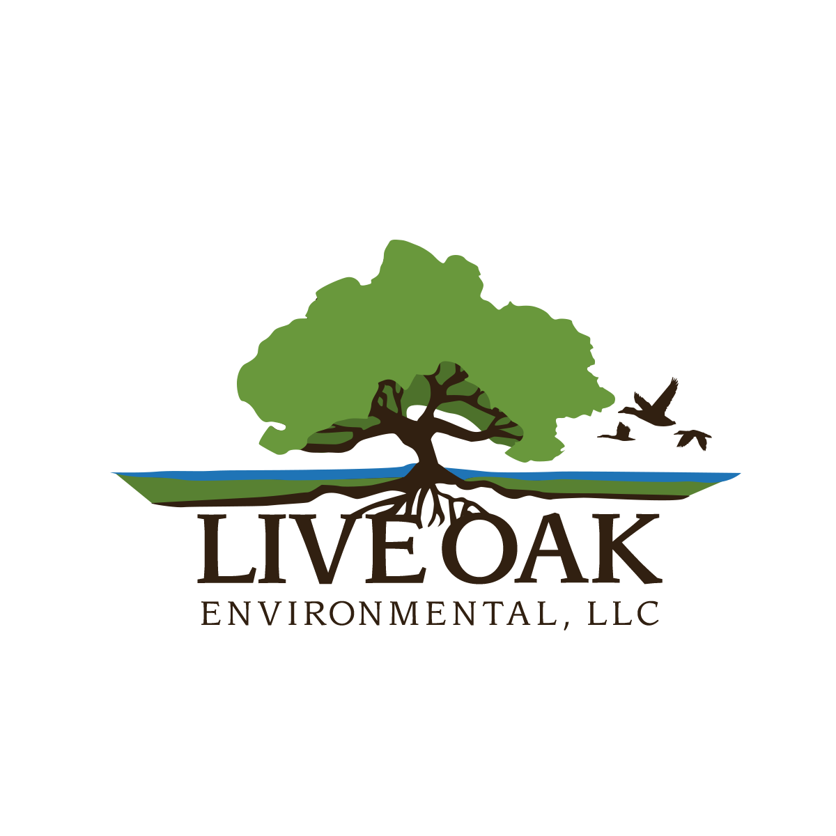 Live Oak Environmental